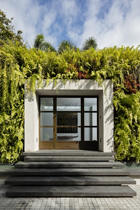 Lush greenery encloses and softens the concrete entranceway.