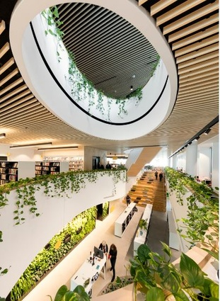 Woollahra Library by BVN.
