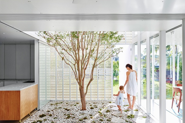 Naranga Avenue House is entered through the extruded brick facade to a double-height patio with a crepe myrtle tree at its centre.