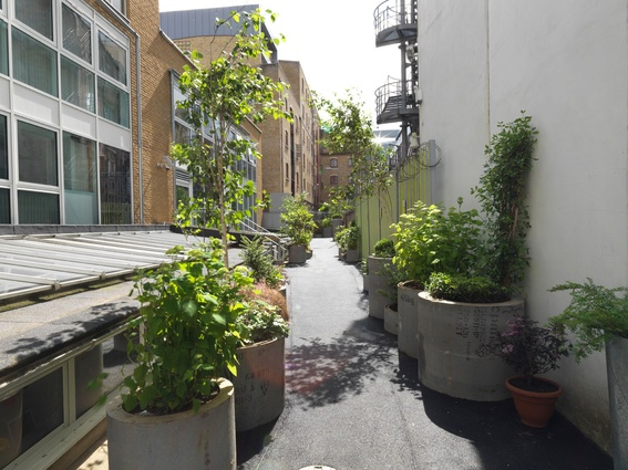 Gibbon's Rent laneway project by Australian architect Andrew Burns in collaboration with British landscape designer Sarah Eberle.
