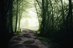 Dark Fairytale carpets from Brintons