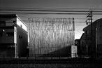 Taira Nishizawa - Wooden works