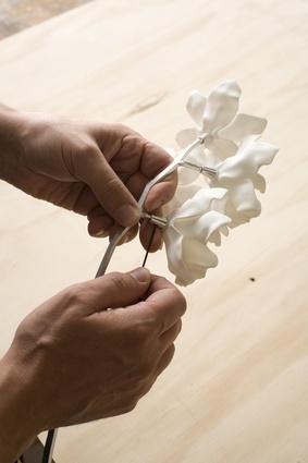 The delicate Cymbidium Orchid light.