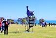 New Zealand Sculpture on Shore