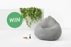 Win a Kyoto outdoor bean bag
