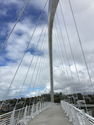 View down the 300-metre Te Whitinga footbridge. The bridge has an elegant sculpted arch in white steel.