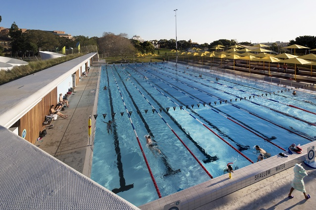 Prince Alfred Park Pool, upgrade by Neeson Murcutt Architects and Sue Barnsley Design, NSW, 2013.