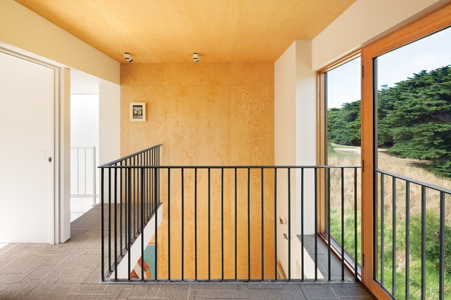 Ply cladding wraps up the wall and over the void of the living area, unifying the upstairs and downstairs spaces.