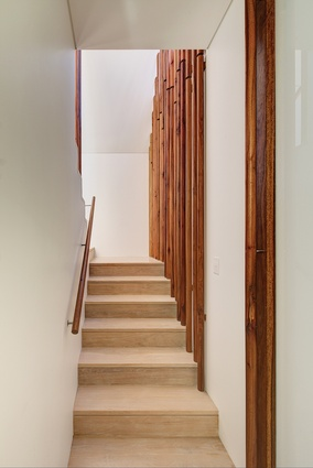 "A concealed stair leads to the upper-storey bedrooms, the warmth of the timber ""tree trunks"" repeated in the handrail."