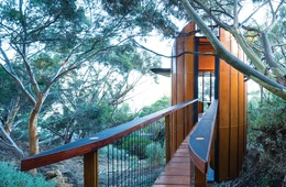 Towering ideas: Tree Top Studio