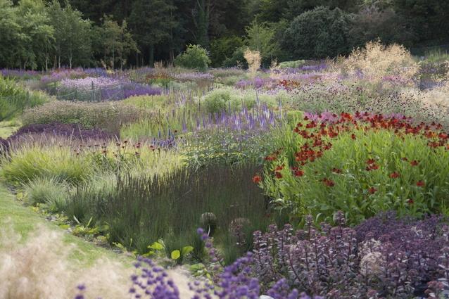 A garden in western Ireland, by Piet Oudolf.