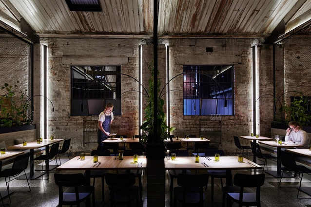 Transformer Fitzroy by Breathe Architecture.