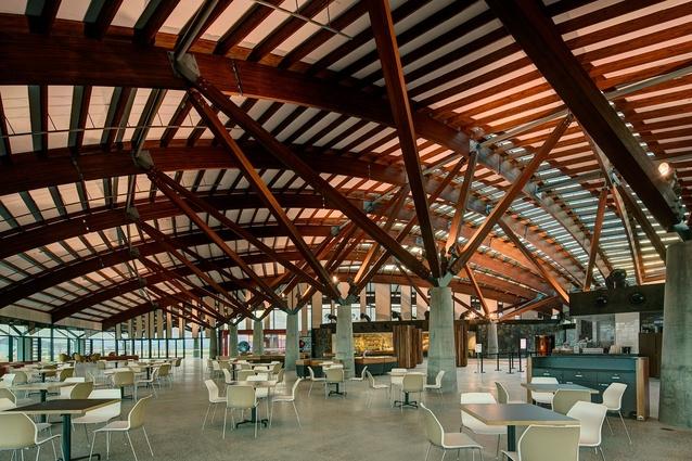 The national arboretum canberra architectureau for Landscape architect canberra