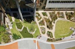 Botanical remedy: Fiona Stanley Hospital landscapes