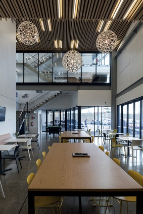 The cafe-style lunchroom has views up into the main lobby and stairwell, and features a double-height, staggered ceiling which is lined with timber slats.