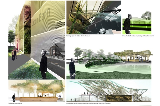 Silver medal winner: Urban agriculture and factory conversion, Bangkok, Thailand.