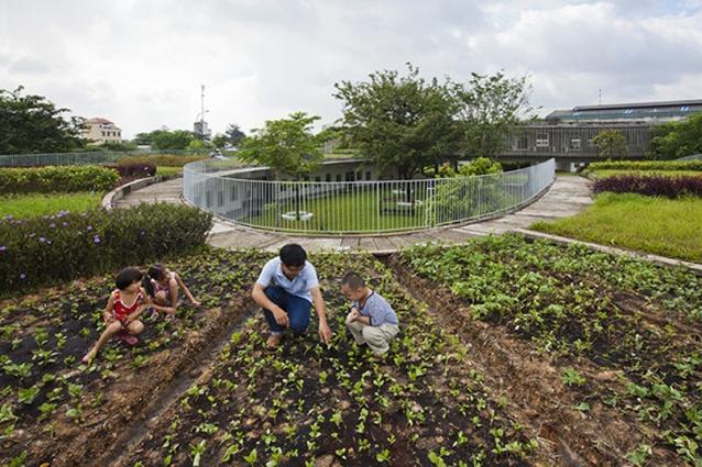 Farming Kindergarten, 2014.