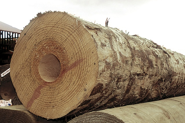 The central structural. cored round logs, were developed by a wood manufacturer in Tuakau and trucked to site.