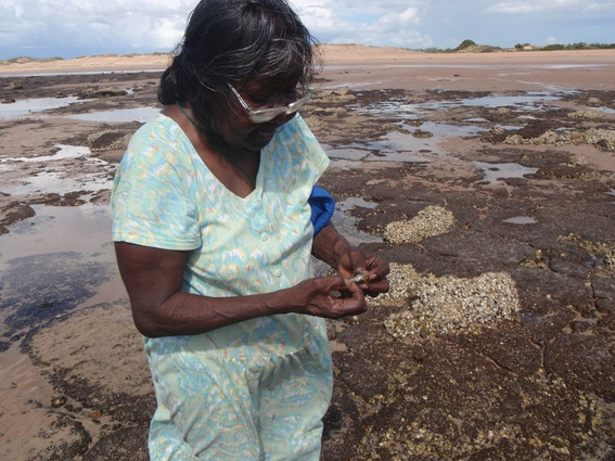 Cissy Djiagween collecting oysters.