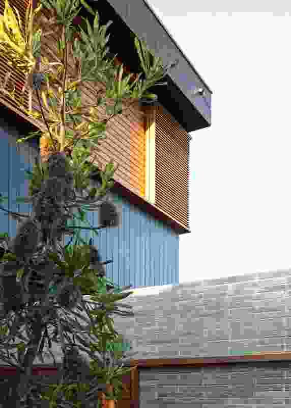 Bondi House by Andrew Burges Architects.
