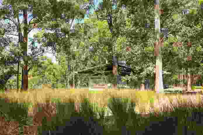 Forest Edge Garden by Jane Irwin Landscape Architecture, a prominent Sydney-based practice.