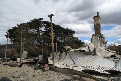 Institute calls for donations for bushfire rebuilding effort