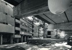 Union College, University of Queensland, 1963–1972. Image: David Knell.