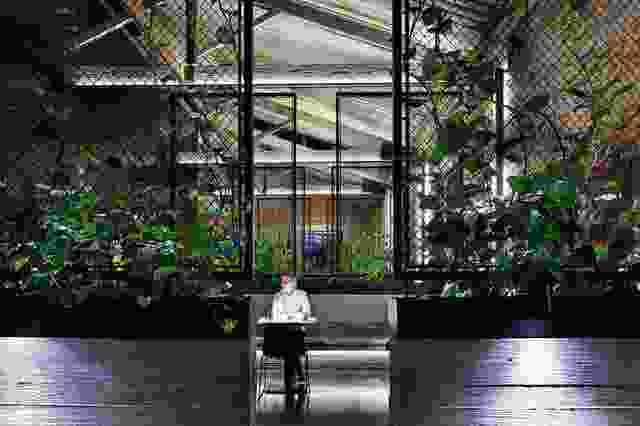 用餐者沐浴在温暖的光线中,在空间中创造出亲密的空间。
