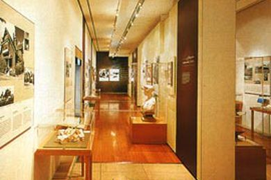 Overview of the exhibition.