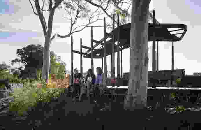 The lookout shelter was inspired by the surrounding eucalypts.