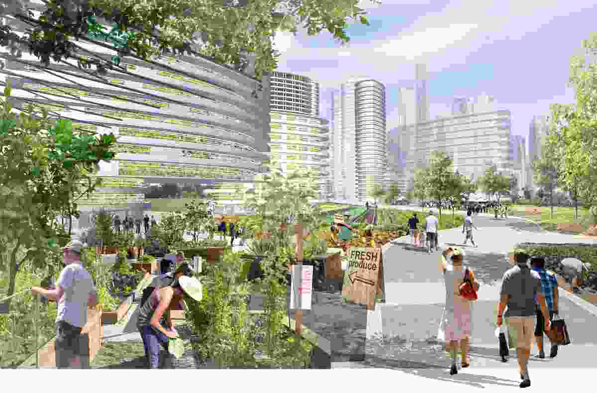 The Green Grid: Inner City Brisbane Strategy – Lat27.