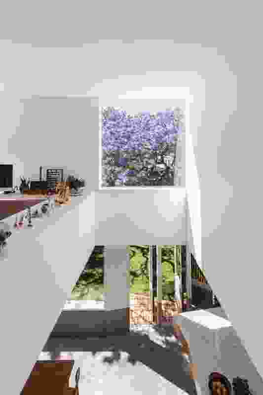 A bridge to the study overlooks an exultant void. The study is bordered by a ledge on which the clients curate an ever-changing collection of objects.