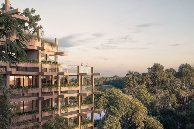 The higher levels proposed One Sydney Park development by MHN Design Union, Silvester Fuller and Sue Barnsley Design will be made from a structure inspired by the surrounding trees.