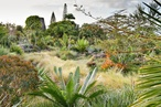 The Cultivated Wild: Gardens and landscapes by Raymond Jungles