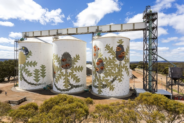 Australian artist Amok Island painted this mural <i>Six Stages of Banksia baxteri</i> in Ravensthorpe in 2016.