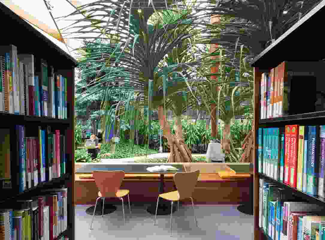 Resource Centre: A leafy outlook creates a sense of calm and wellbeing.