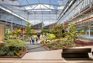 Tonsley Innovation District (Adelaide, South Australia) by Oxigen, Woods Bagot, Tridente Architects, KBR, WSP and Renewal SA.