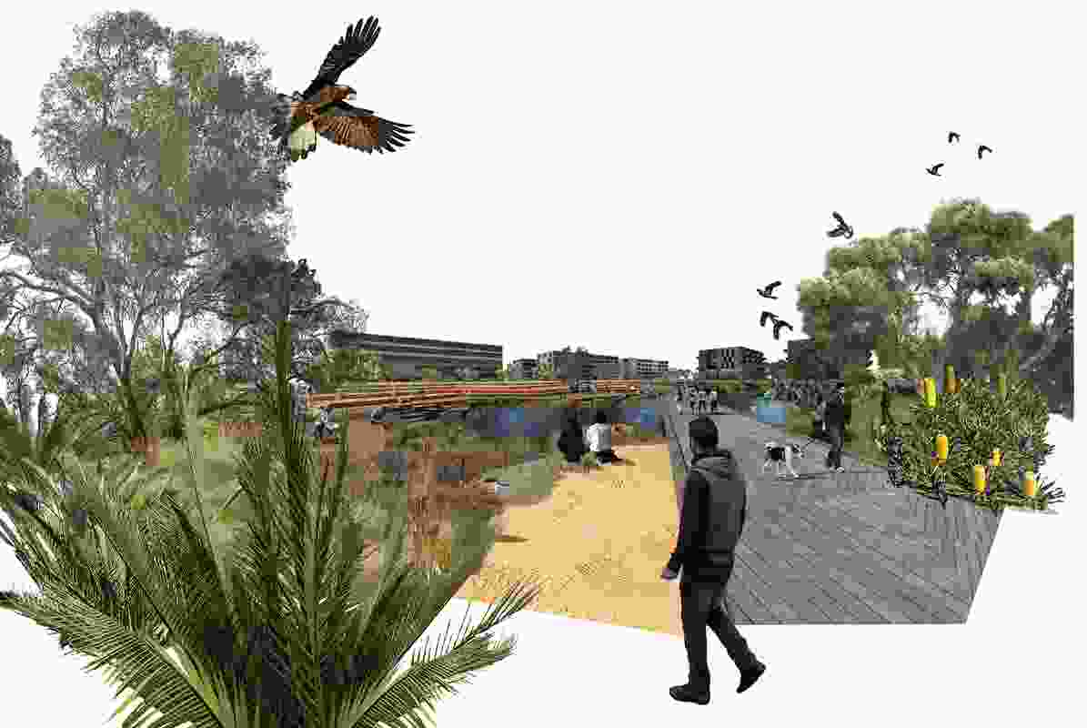 The Living Knowledge Stream Design Guidance for Curtin University by Syrinx Environmental, Sync7 and Noel Nannup.