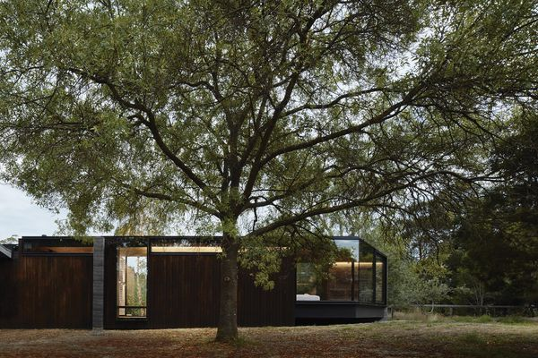 A Pavilion Between Trees by Branch Studio Architects.