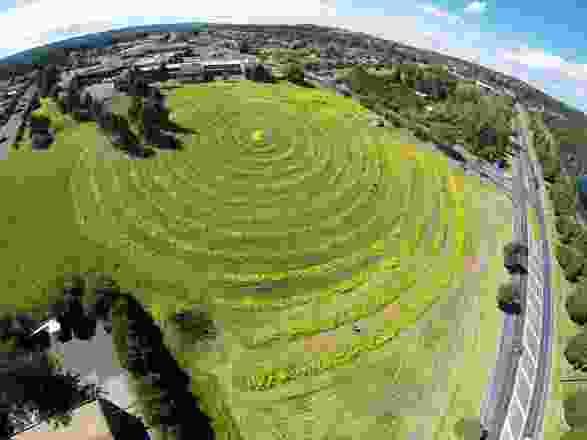 """2014年最大、最""""设计""""的种植园,在原教育部公立医院原址上形成了2.4公里长的螺旋形。"""