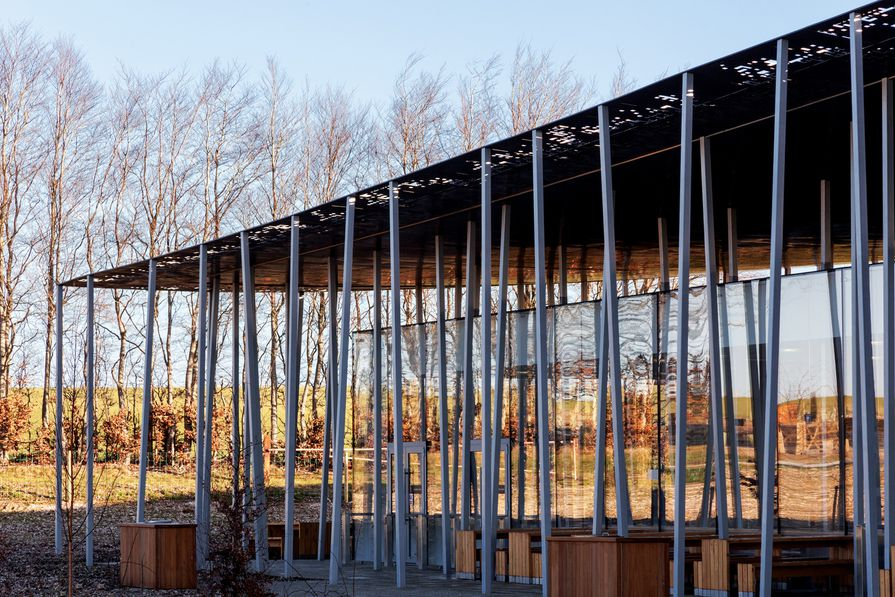 Two boxes – one clad in glass, the other in timber – stretch beneath a thin, undulating canopy.
