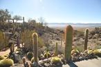 Mojave Rock Ranch: An arid zone jewel