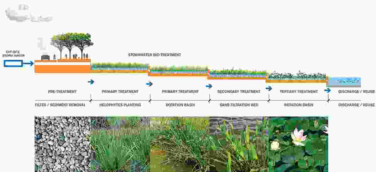 A network of large-scale filtration landscapes will purify water.