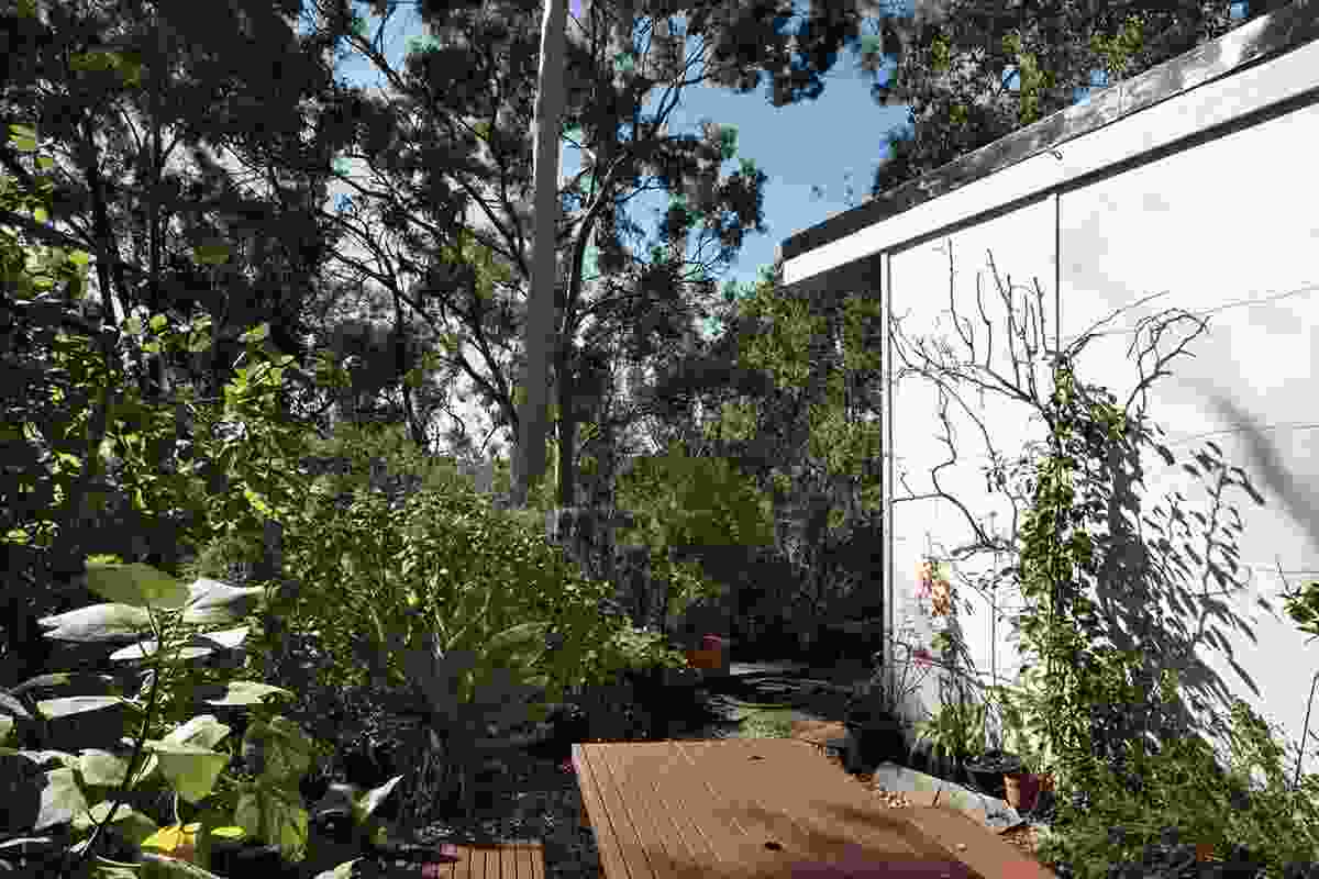 External spaces are integral to the liveability of the house.