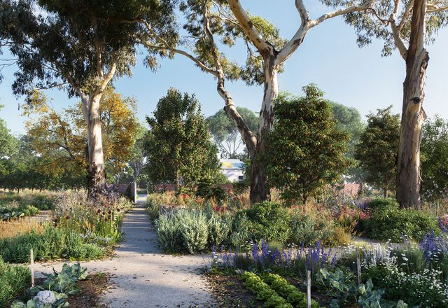 The proposed Healing Garden at Heide Museum of Modern Art by Openwork.