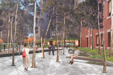 The scale of the surrounding office towers is reduced through the introduction of Corymbia and Eucalypt species, which create a continual canopy throughout the plaza.