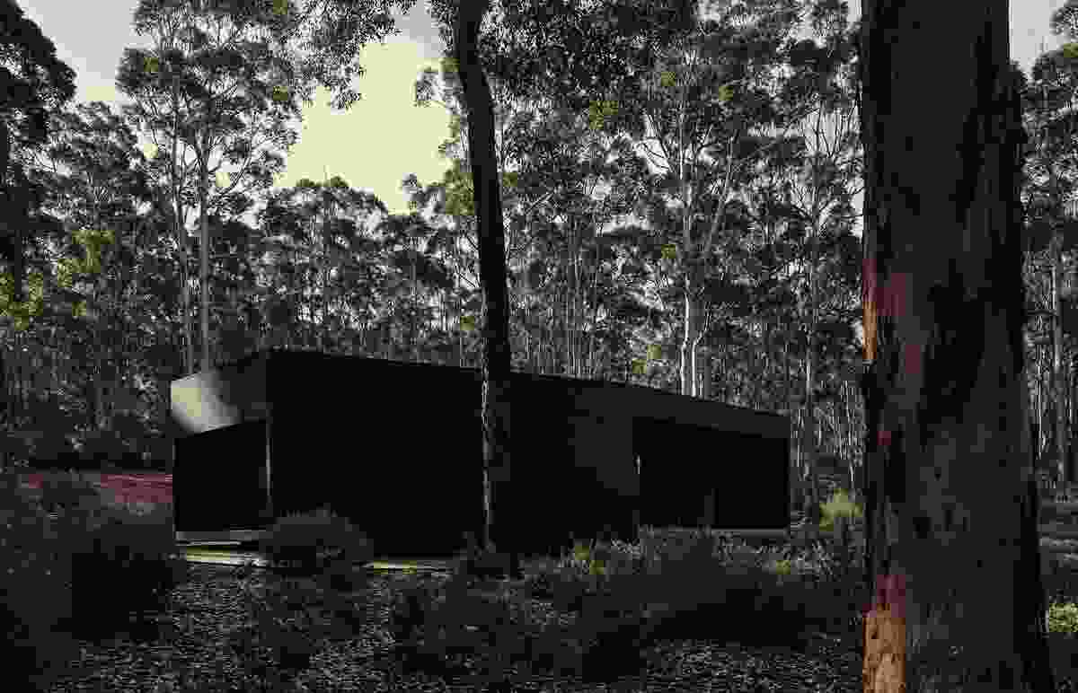 Boranup House by MORQ Architecture.