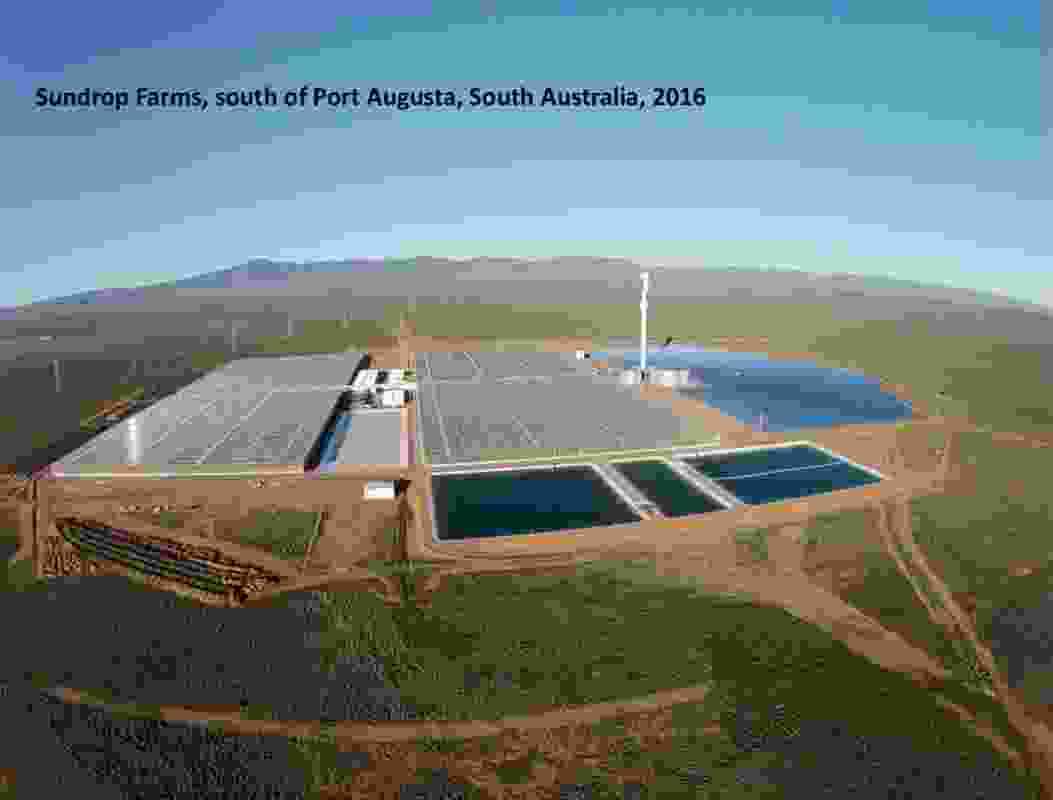 OMA suggest Australia's countryside holds opportunities for intensive farms.
