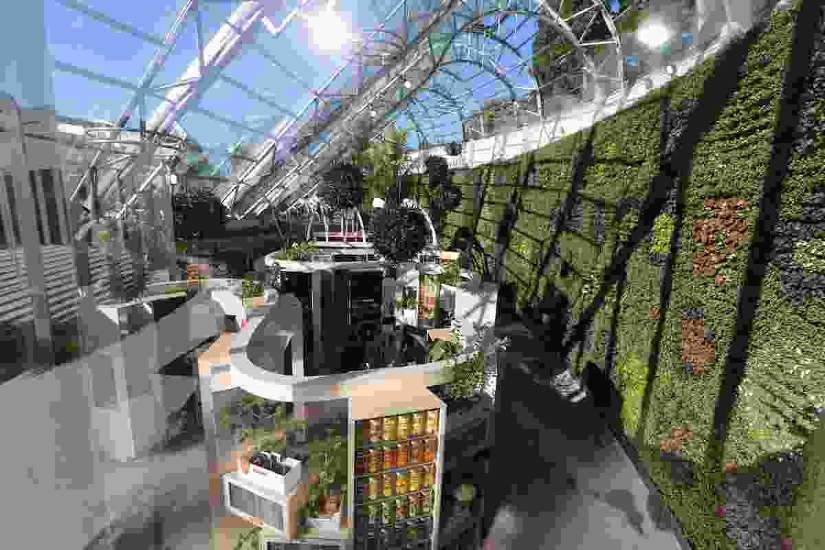 The Sweet Addiction exhibition inside the Arc glasshouse at the Royal Botanic Gardens Sydney.