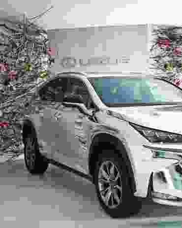 The entry to the marquee featured the new Lexus NX car and mounted stacks of branches and roses by Joost Bakker.